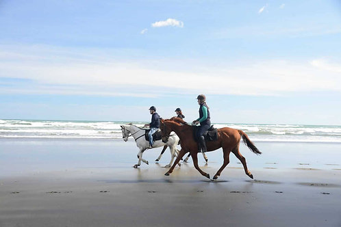 Horse Back Riding at the Beach