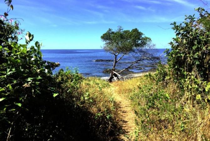 Discover Playa Carbón