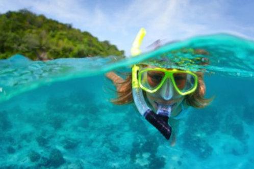 1.5 Hour Snorkeling & ATV Tour