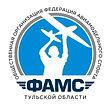 лого федерация авиационного спорта 3 (1)