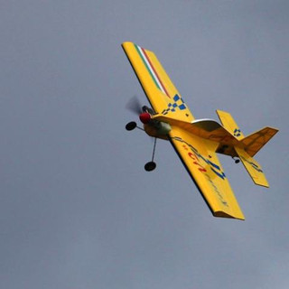 Тульские крылья 2010