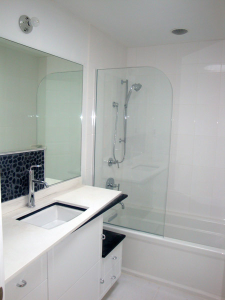 10 - Glass screen on bath tub