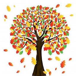 Fall Tree1.jpg