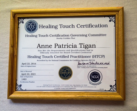 Anne's Healing Touch certification.