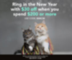 dec19-social-media-week5-cat.jpg