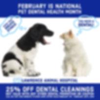 Dental Month Mailer Final_edited_edited.jpg