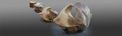 scultura in legno di abete