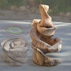 264- Una spirale di vita