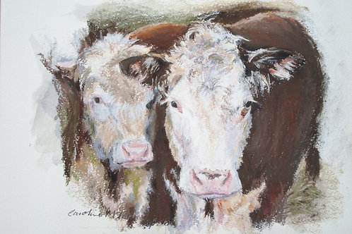 Andrew's Cows, A5 greetings card