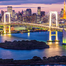 Tokyo. International Conference on Pollution Control Chemistry and Waste Management