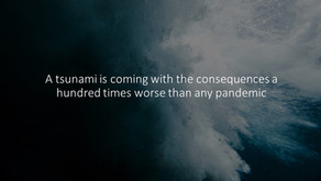 A tsunami is coming with the consequences a hundred times worse than any pandemic
