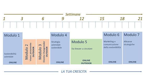 MESM struttura.jpg
