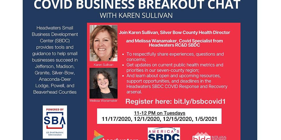 COVID-19 Business Breakout Chat with Karen Sullivan
