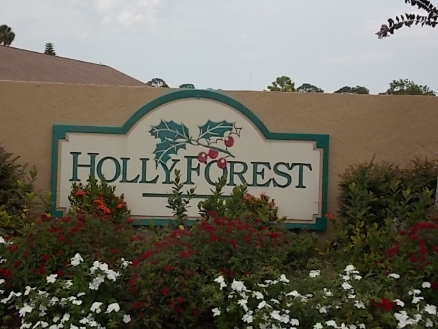 Holly Forest 1.jpg