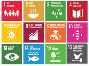 Turbulent and the UN Sustainable Development goals
