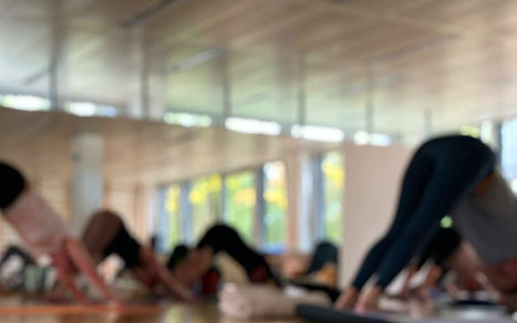Yogatraining%206_edited.jpg