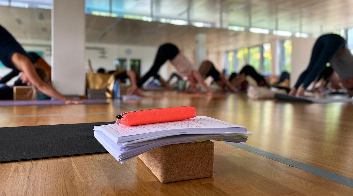 Yogatraining_edited.jpg