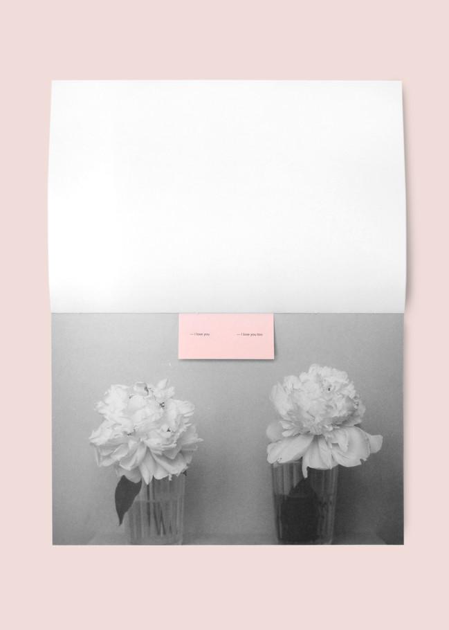 pink21.jpg
