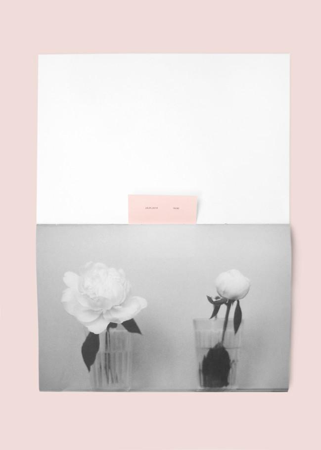 pink04.jpg