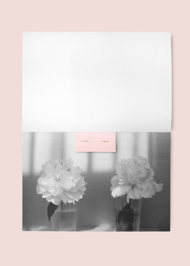 pink19.jpg