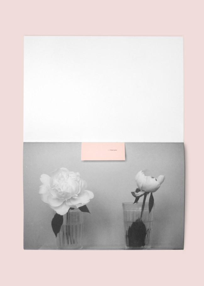 pink05.jpg