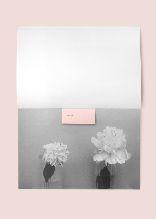 pink25.jpg