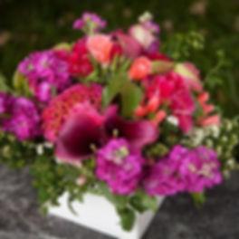 IMG_7991-01-05-19-12-04_edited.jpg