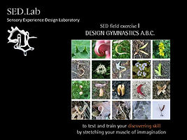 181201_designship_MasayoAve03_Page_162.j