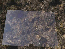 Fist Place in GLASS competition, exhibited in New York Center For Photographic Arts, 2017