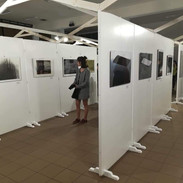 exhibition_romania2.jpg