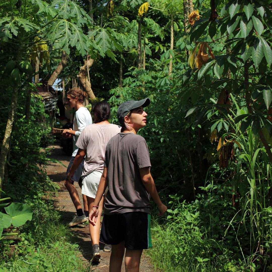 Walking Bali North to South.jpg