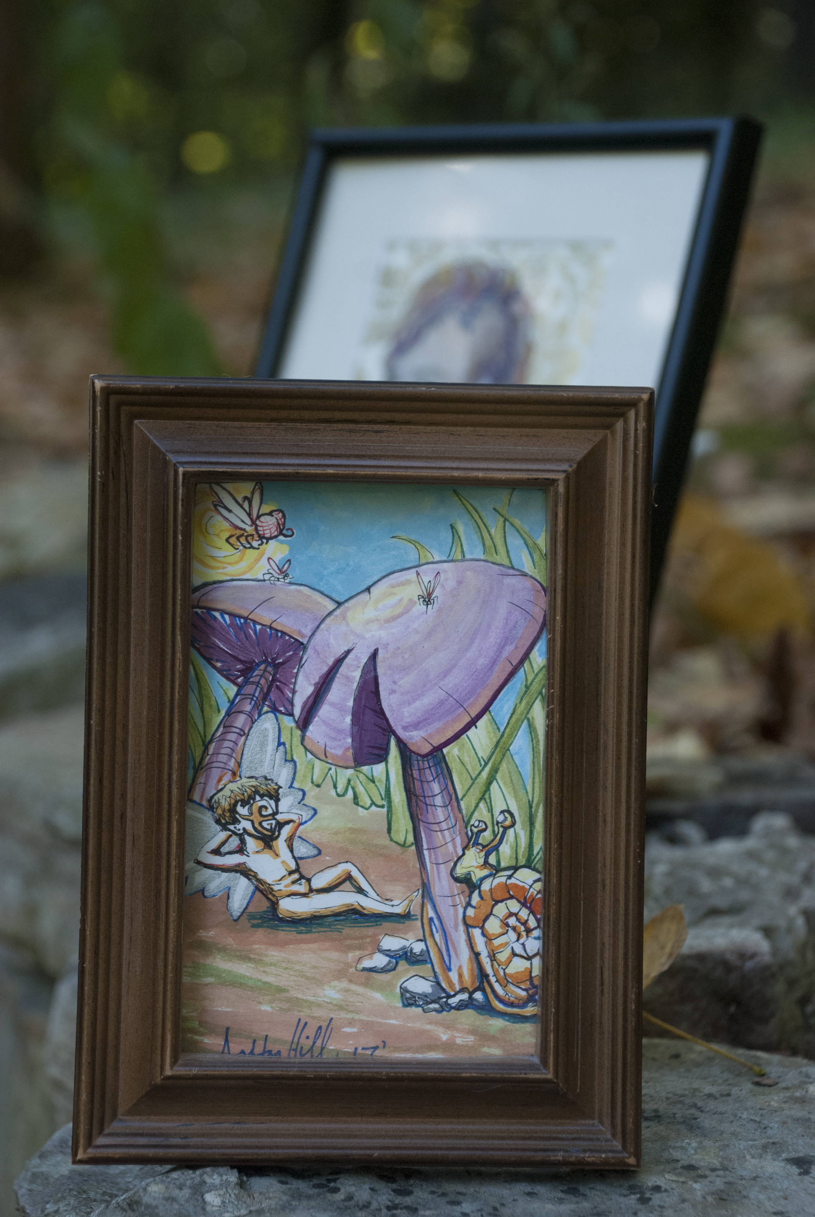 Fairy Siesta