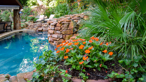 Potted plants by Pool