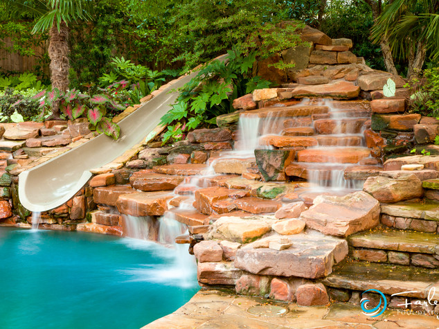 Dolphin slide in natural setting.