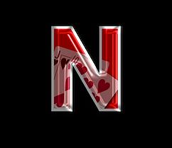 Netrix Logo transparent