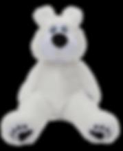 polar-the-bear-compressor.png