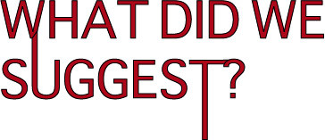 a red header for a slightly unusual blog which says 'What did we suggest?'
