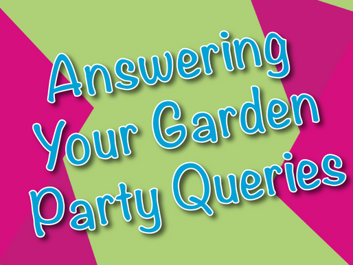 Answering Your Garden Party Queries | Outdoor Party With Non-Stop Kids 2021