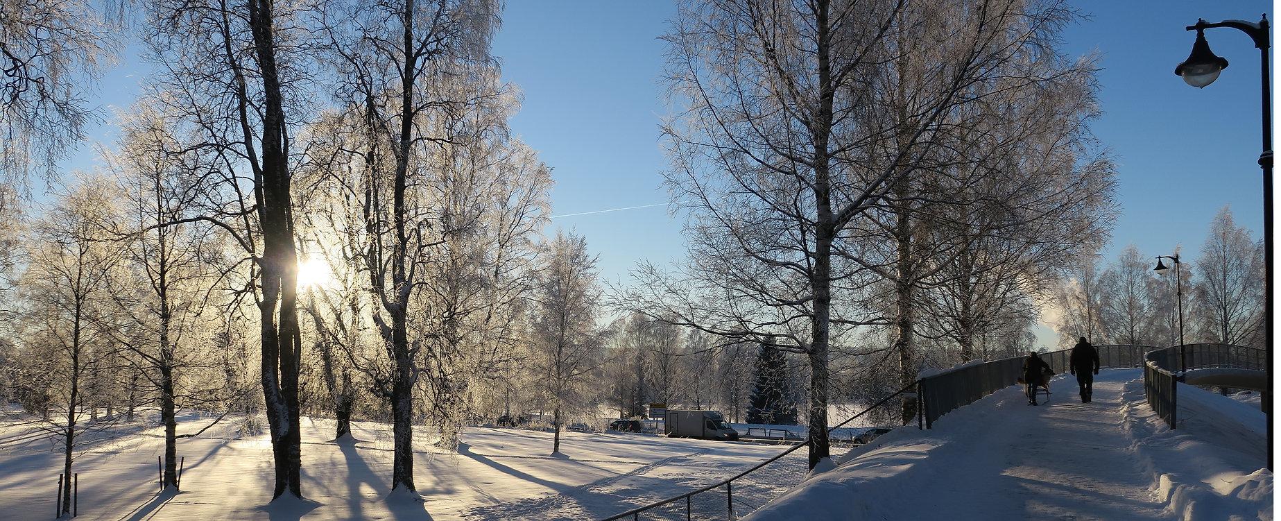 En-vinterdag-i-Elverum-EEK-00095 Nora Fossem Nygaard Foto.jpg