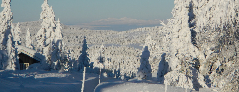 Flotte Vinter Norge