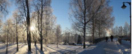 En-vinterdag-i-Elverum-EEK-00095 Nora Fo