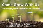 employment opportunities.jpg