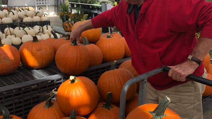 pumpkins and nice customer.jpg