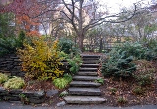 Stone Stairway in the Garden.
