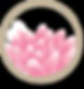 Pink Lotus.png
