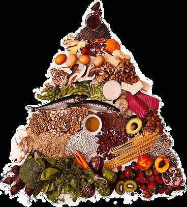 food_pryamid.png