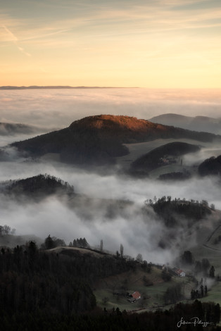 Fogy Hills