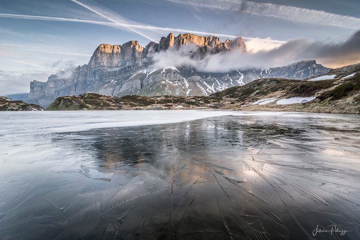 Iced Reflection