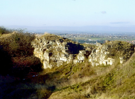 Friends of Denaby Crags New Website and Newsletter