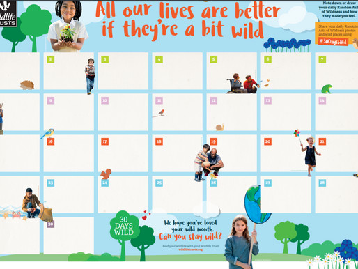 30 Day Wild Activity from Conisbrough Library